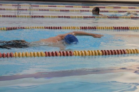 Swimmers take laps at the University Sports Complex pool. Pending SGA approval, the swim club will use the facility for team practices.