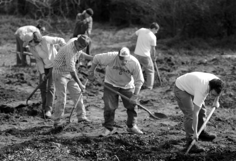 Volunteers with Cape Fear Crop Mob and Leading Into New Communities (LINC) work together to start an urban farm in North Carolina. Such projects benefit both the community and the individual.