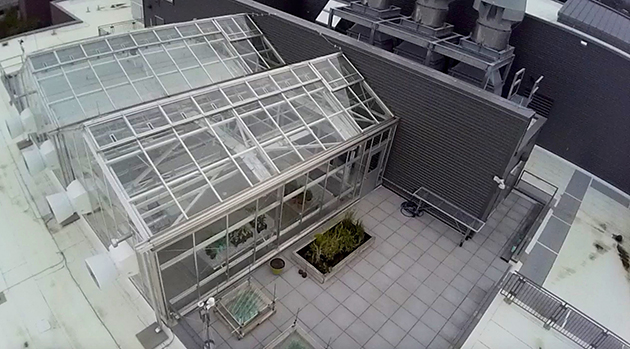 The Azby Fund Greenhouse and deck