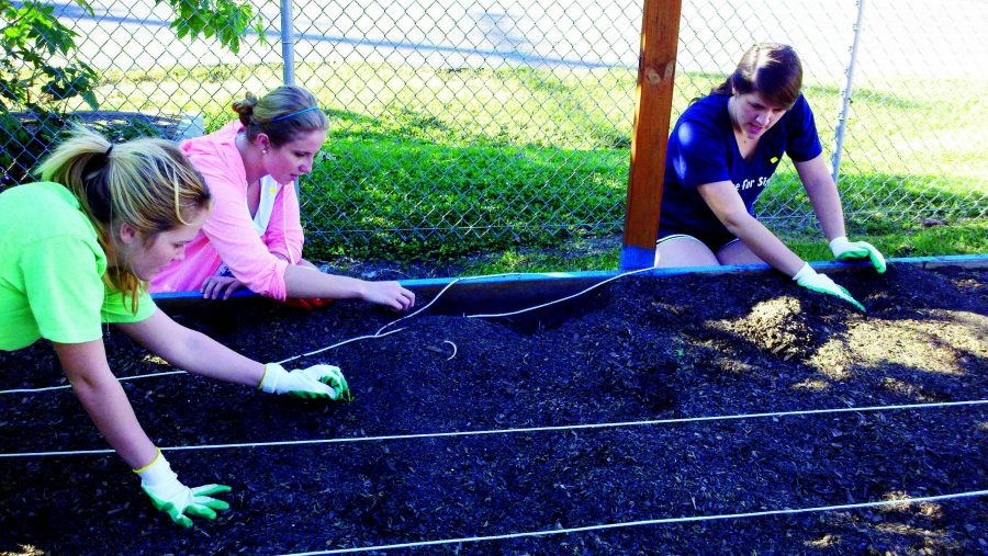 Students+plant+a+garden+for+the+New+Orleans+Food+and+Farm+Network+as+part+of+Wolves+on+the+Prowl+2012.+Wolves+on+the+Prowl+is+an+annual+service+day+aiming+to+bring+together+students%2C+alumni+and+faculty+of+Jesuit+universities+at+service+sites+across+the+nation.+Photo+credit%3A+The+Maroon