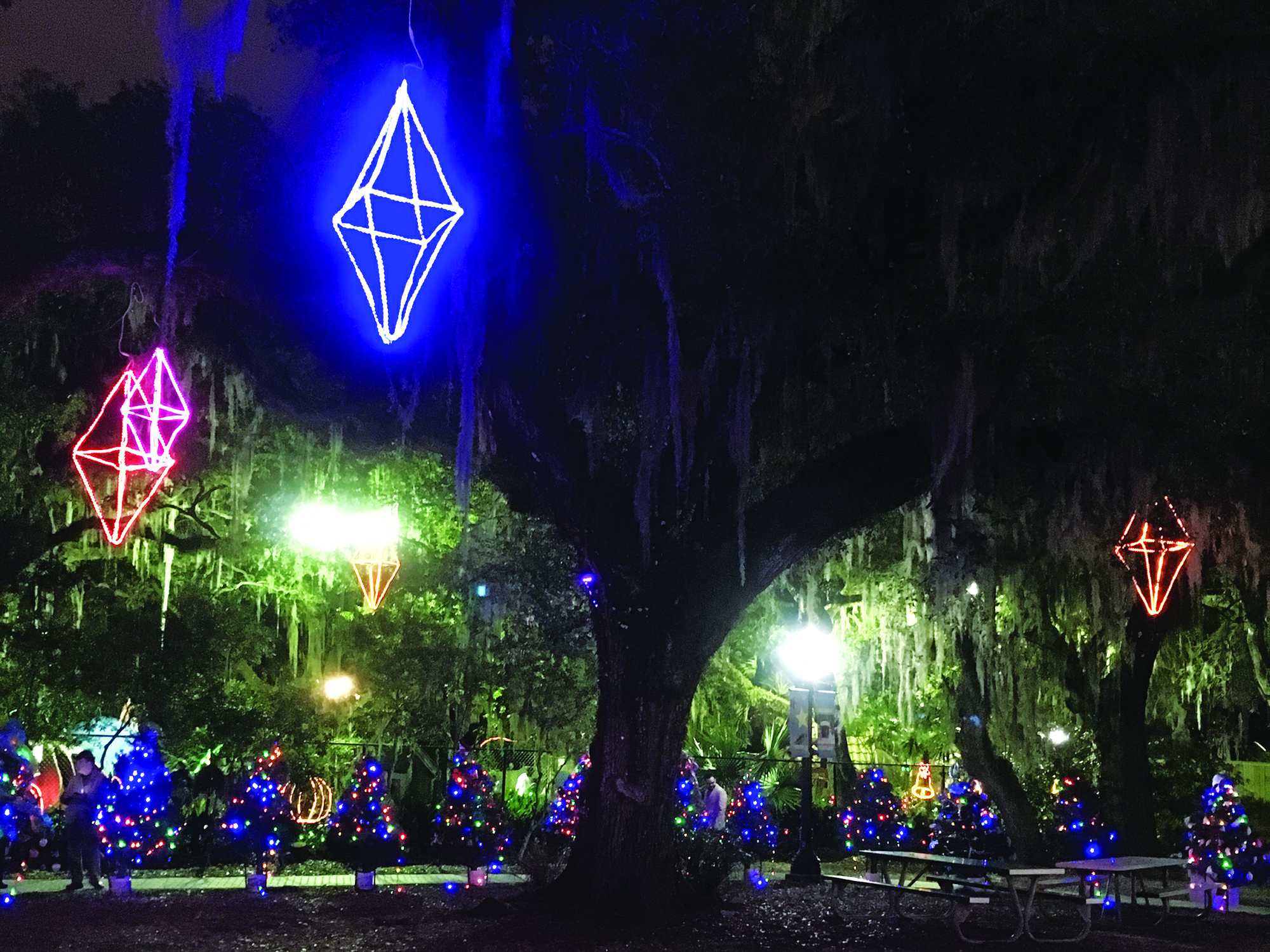 Celebration in the Oaks lights up City Park