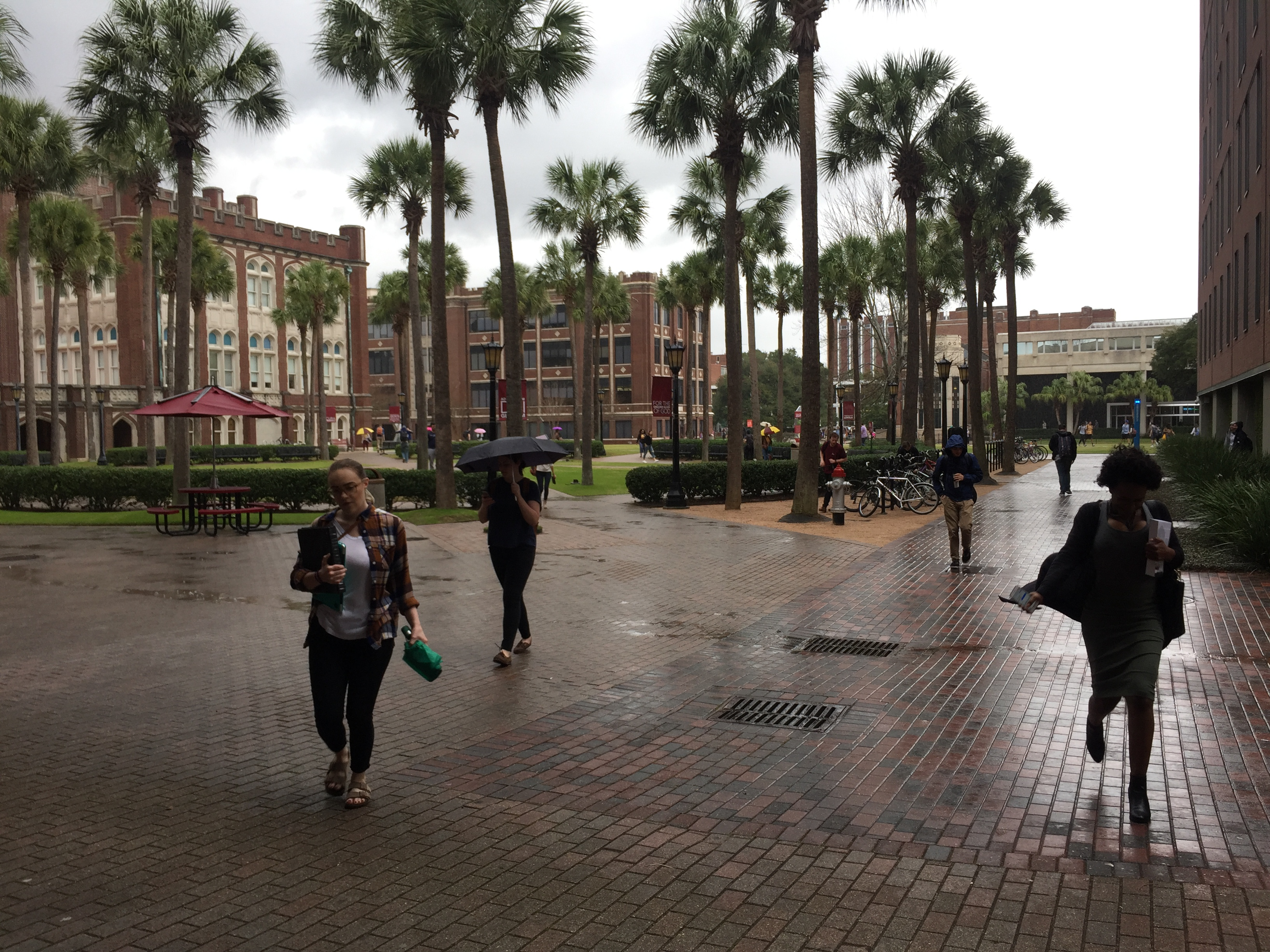 Students hurry to class in the rain at Loyola University New Orleans. This time of year is especially gloomy for those who experience seasonal depression. Jan. 19, 2017. Photo credit: Haley Pegg