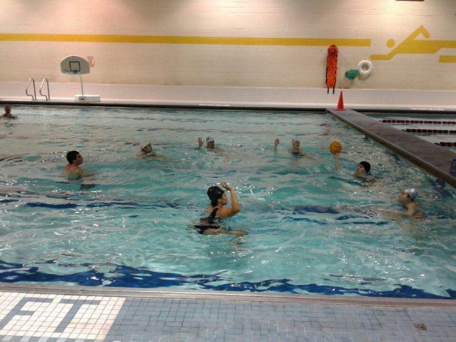 Water+Polo+team+makes+a+splash+in+their+inaugural+year