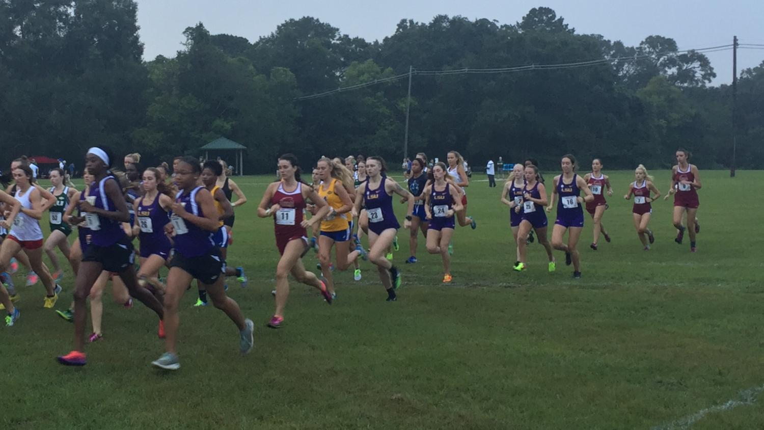 Cross Country Team Steadily Improves in LSU Meet