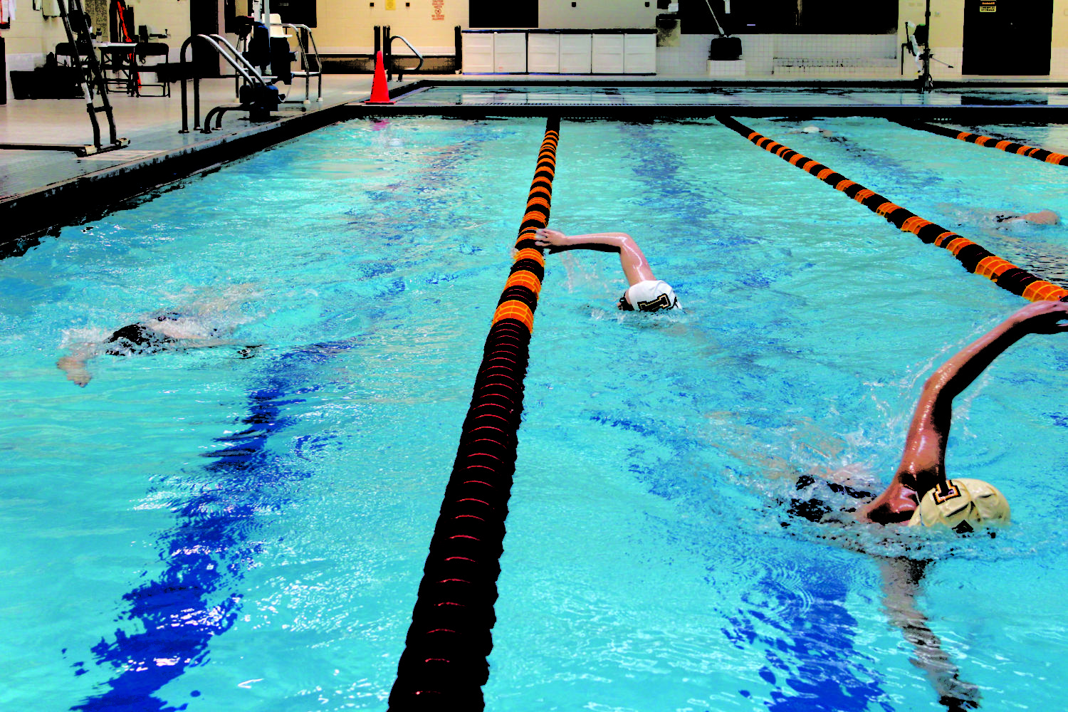 Swim team strengthens roster and sets sights on improved national ranking