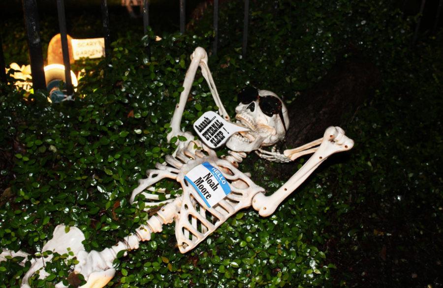 Lazy Bones at The Skeleton House Photo credit: Hannah Renton