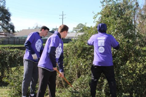 Local universities unite for MLK Day of Service