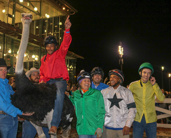 Jorge Monserate celebrates on top of Flock Star Racer. Monserate won both the ostrich race and the camel race.