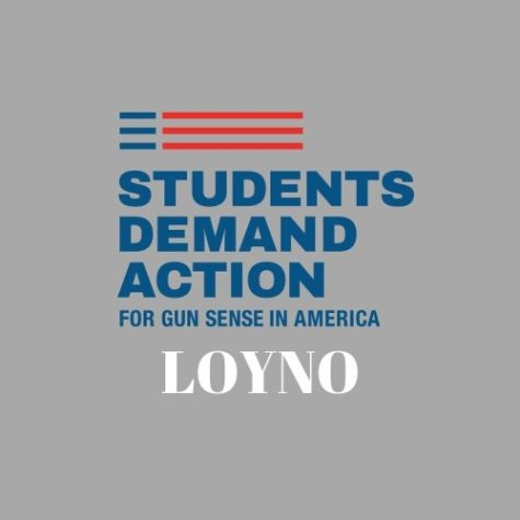 Organizations hopes to educate on gun control