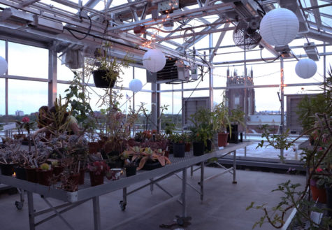 Greenhouse party sows the seeds for Earth Week