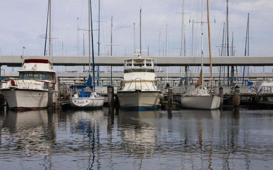 Fishing boats docked at the Orleans Marina in Lakeview.