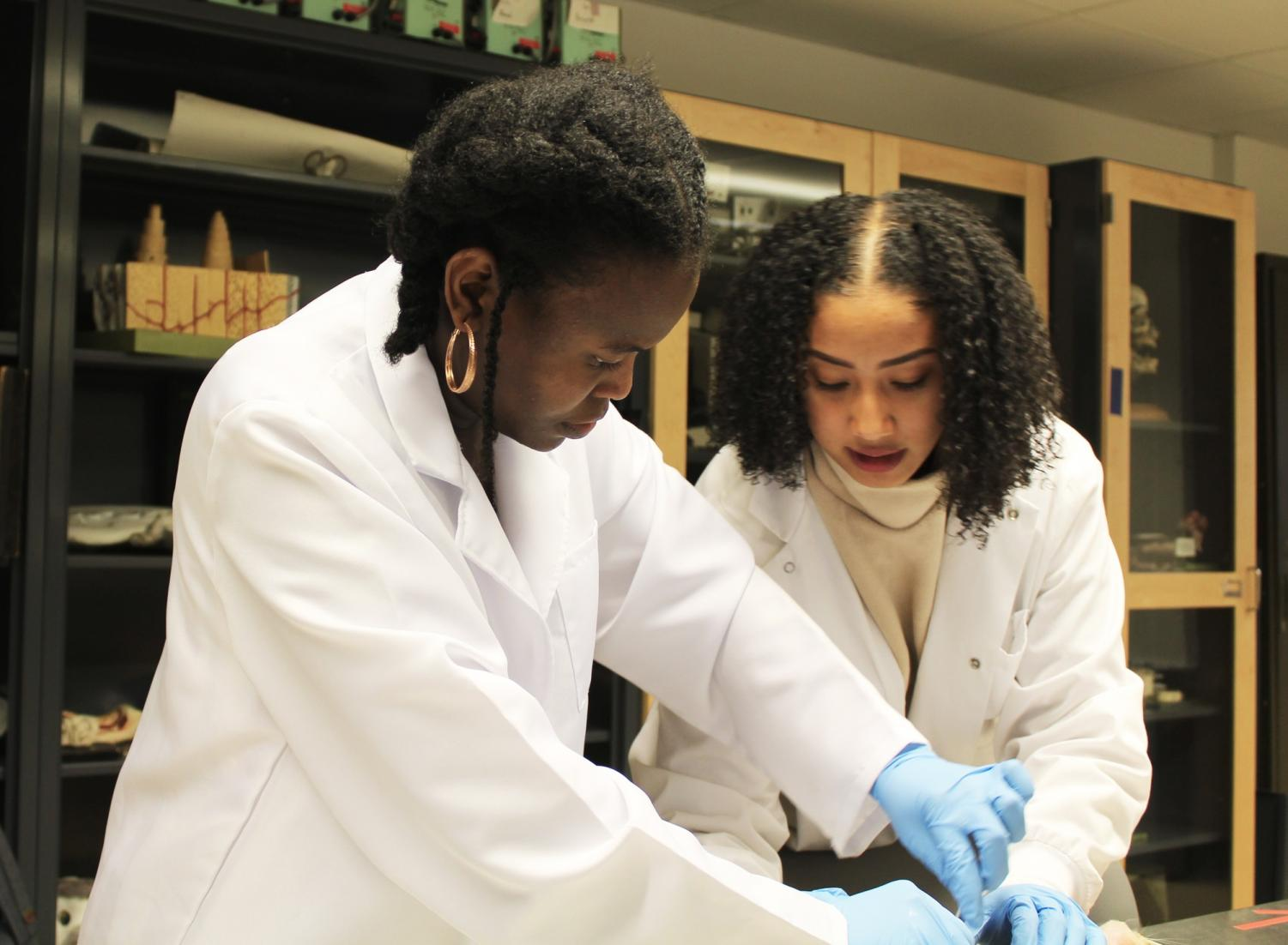 Glory 'Tomi' John and Alexys Wright work in a lab together on Jan.10. The two worked together to start a new chapter of the Minority Association for Pre-Medicine Students at Loyola. Photo credit: Rae Walberg