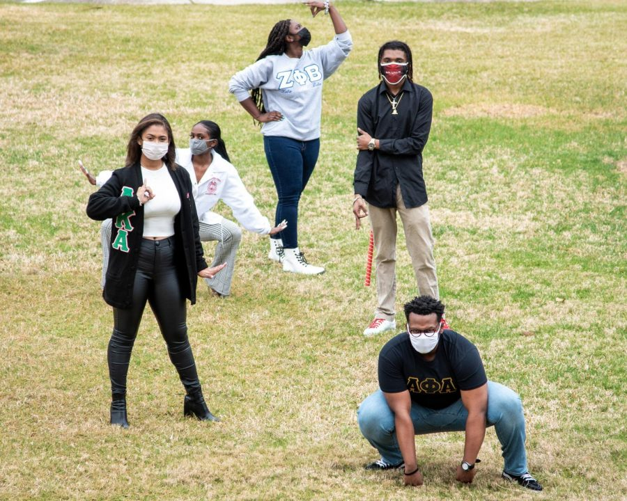 Five members of black fraternities and sororities pose on campus.