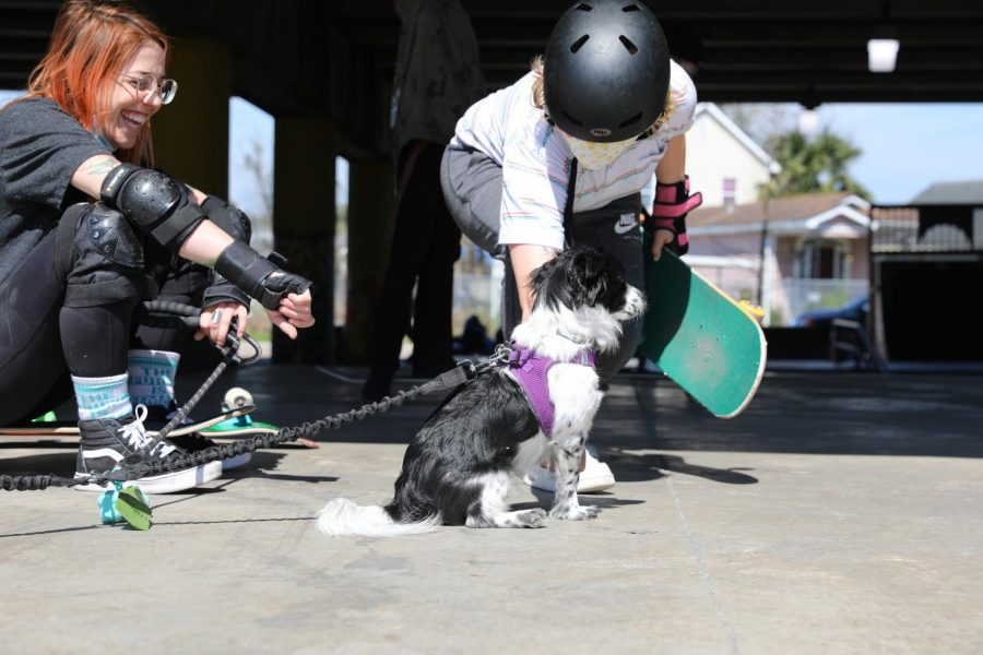 Two skateboarders take a break from skating to pet a dog at Parisite DIY Skatepark. Skateboarders like these find a community at skate parks.